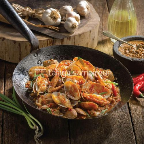 Kerang Batik - Live Seafood