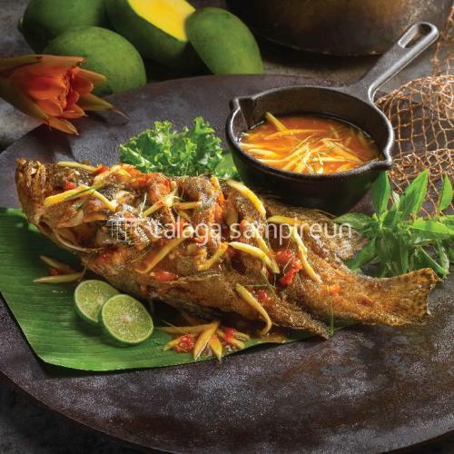 Ikan Laut - Fresh & Live Seafood